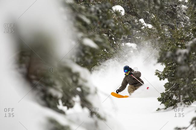 View of man skiing in Westward Ho at Alta Ski Area, Utah, USA