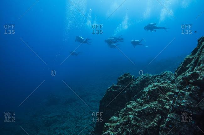 Group of scuba divers swimming underwater, San Benedicto Island, Revillagigedo Islands, Colima, Mexico