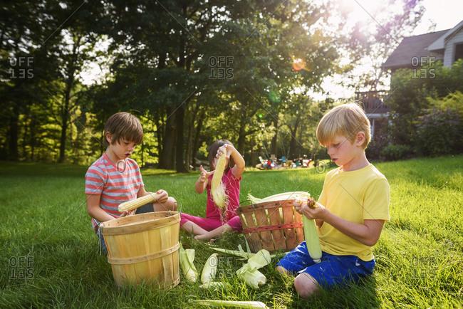 Three young children shucking corn in the backyard