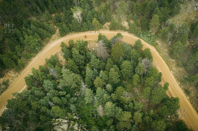 Two people cycling on dirt road in mountains surrounded by pine trees