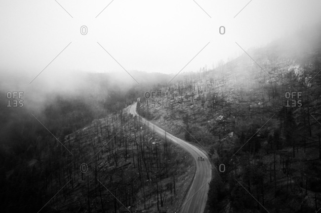 People cycling on dirt road in the fog in mountains surrounded by burn area of pine trees
