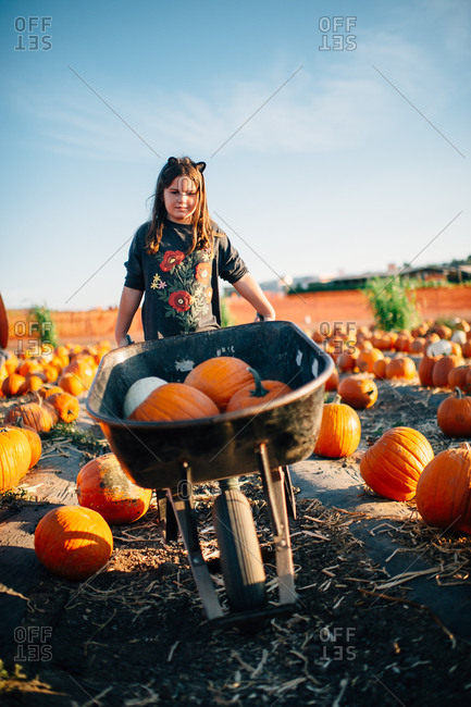 Girl pushing a wheelbarrow full of pumpkins