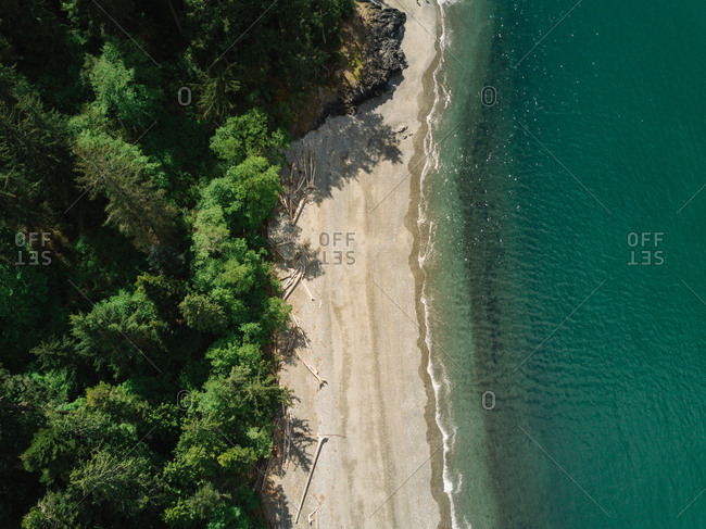 Aerial view of emerald water meeting a shoreline