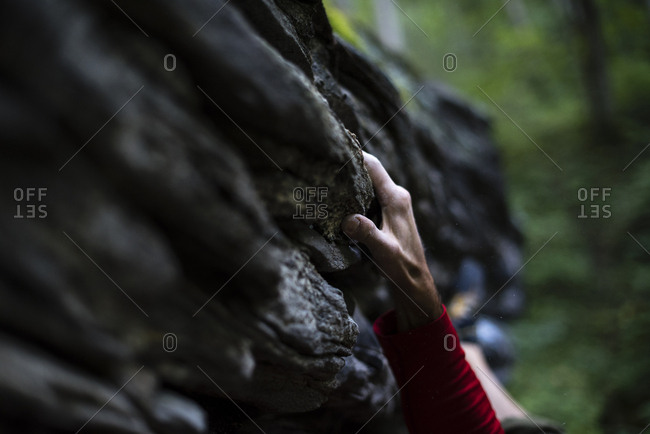 Close-up of cropped hand gripping on rock while bouldering in forest