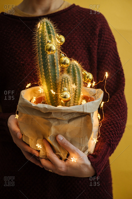 Woman holding a decorated cactus with Christmas bulbs and lights