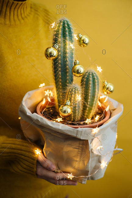 Person holding a decorated cactus with Christmas bulbs and lights