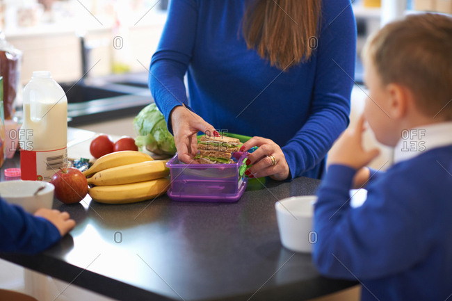 Cropped view of mother packing her school children's lunch box in kitchen