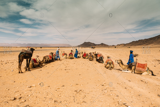 Zagora, Morocco - April 18, 2014: People with camels in caravan having rest on sands of deserts