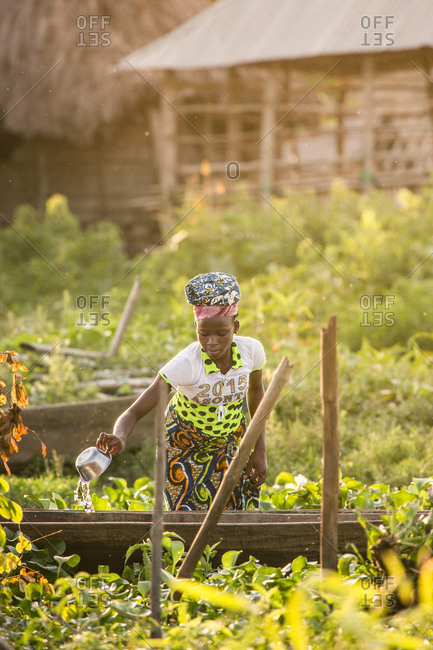 BENIN, AFRICA - AUGUST 31, 2017: African girl in colorful outfit watering growing plants in garden on background of house