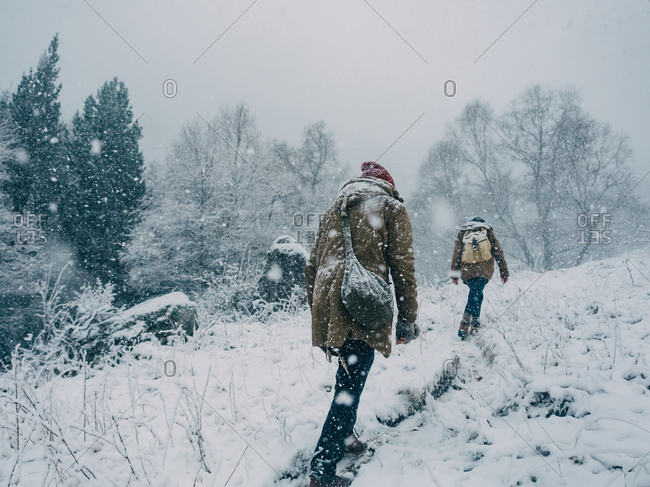 Anonymous people walking up hill in snowfall on background of tree covered in snow