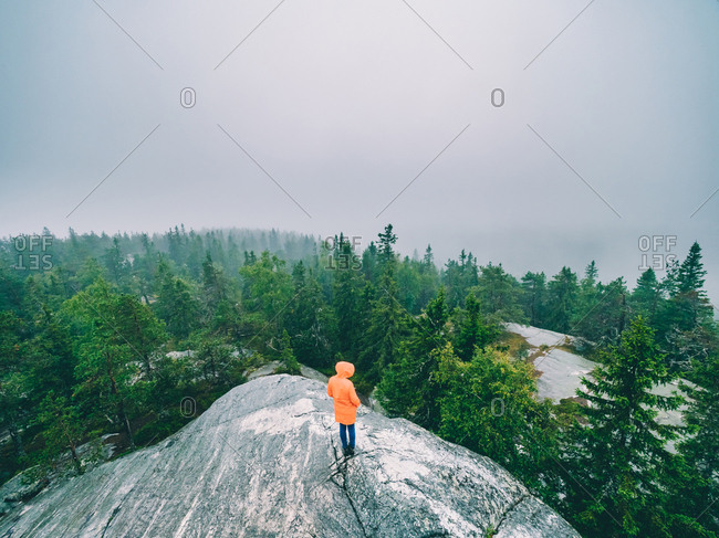 Tourist on rock exploring views of woods
