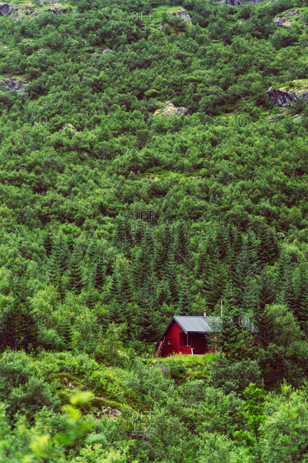 Red house placed on slope of mountain among coniferous woods