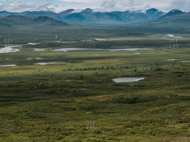 Green prairie in mountains