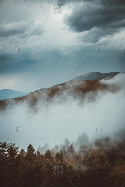 Landscape of thick spreading above slope of mountains with evergreen trees under overcast