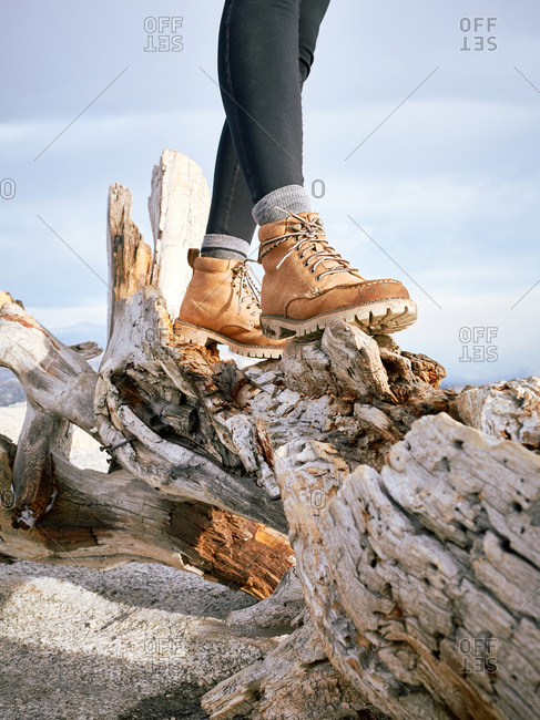 Hiking boots stand on a gnarled log