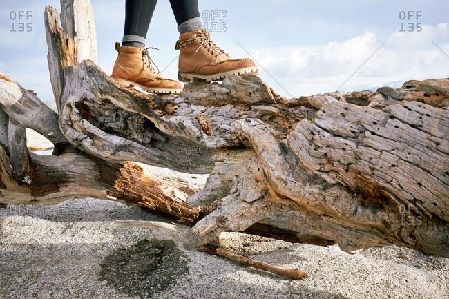 Hiking boots balance on a gnarled log