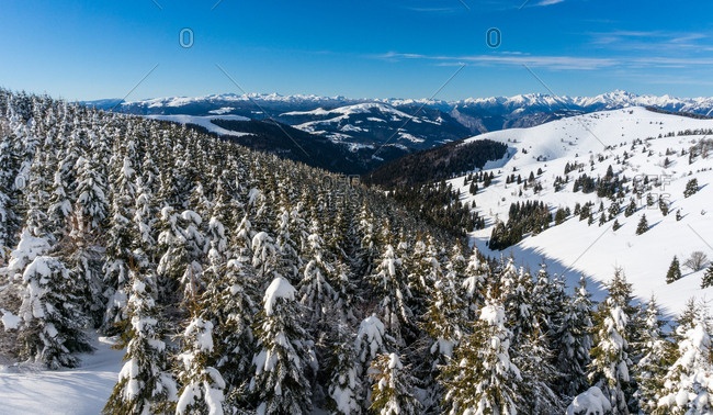 Valleys of Monte Grappa in the depths of winter, Monte grappa, Veneto, Europe, Italy, Europa, Italia