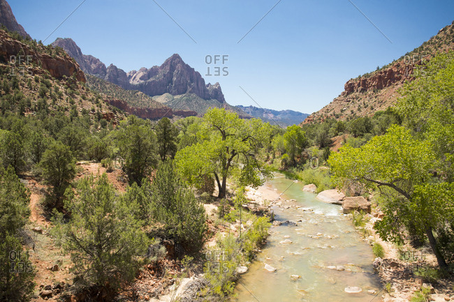 Blue skies above Zion's Virgin River