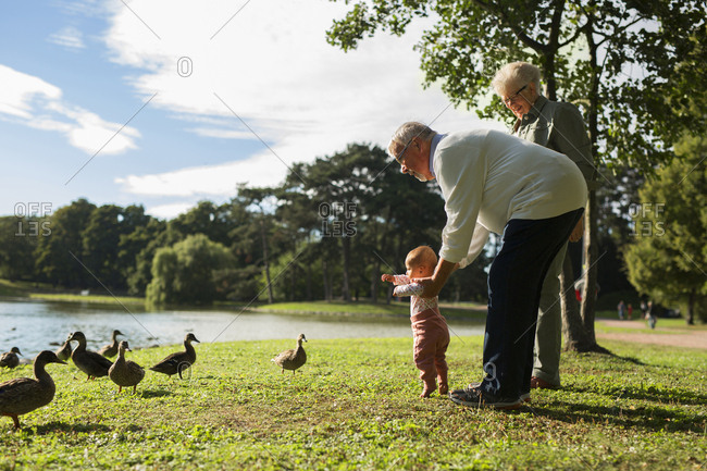 Grandparents with granddaughter feeding birds in park