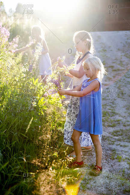 Girls picking flowers in garden