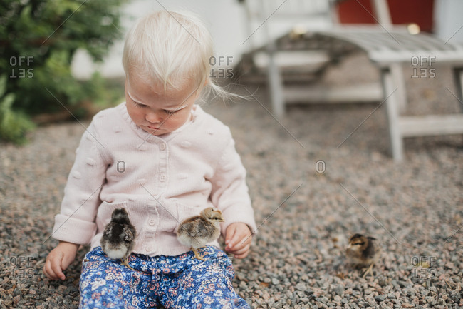 Baby girl playing with chicks