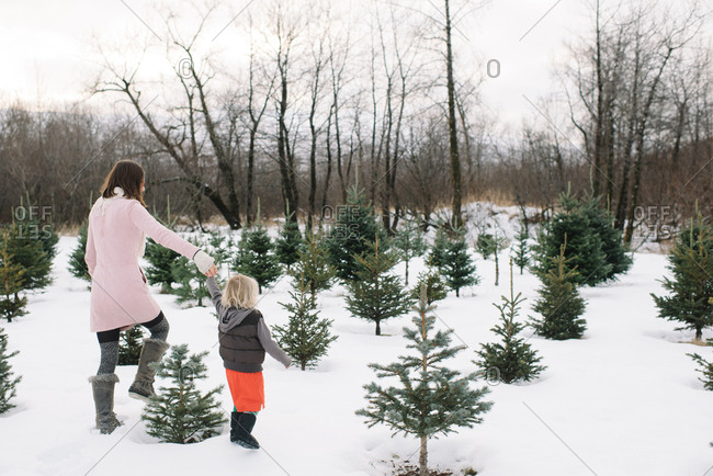 Mother and child at a Christmas tree farm
