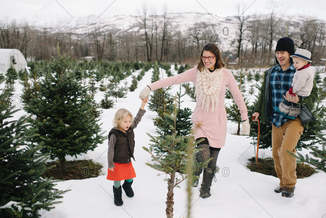 Family selecting a tree at a Christmas tree farm