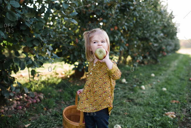 Girl holding a basket eating a freshly picked apple