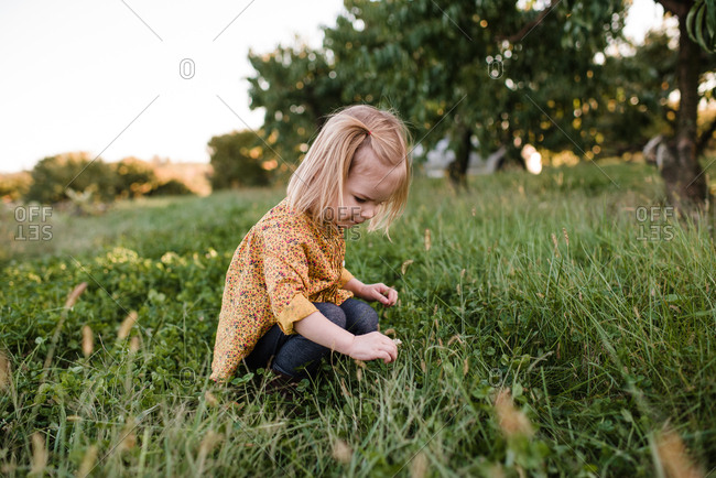 Girl picking a clover in a field of grass