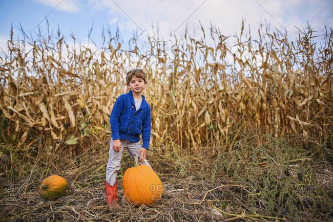 Young boy carrying pumpkins in a pumpkin patch