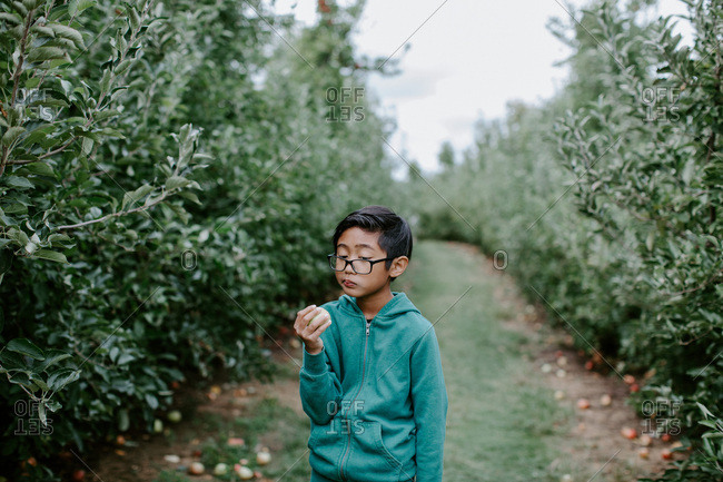 Boy with glasses holding a freshly picked apple