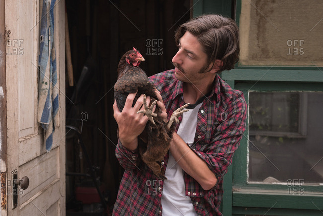 Man holding a hen at poultry farm