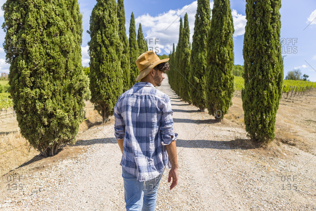 Italy- Tuscany- man walking on a road with cypresses