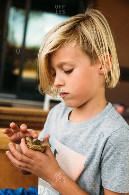 Boy petting a turtle in his hand
