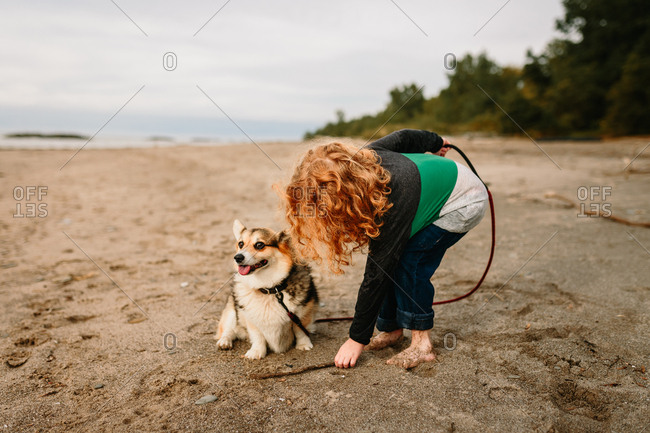 Child with dog playing with stick at the beach