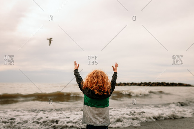 Child at beach with seagull flying