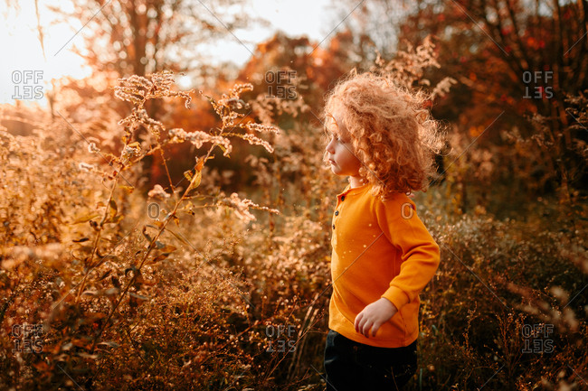 Child walking on autumn day