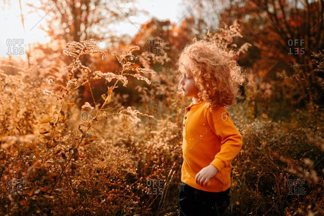 Child walking on autumn day