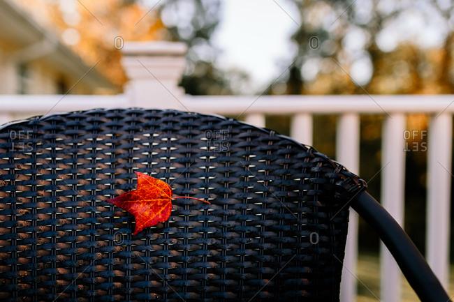 Autumn leaf on chair