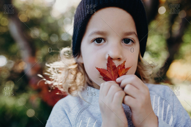 Portrait of a boy holding an autumn leaf in front of his face