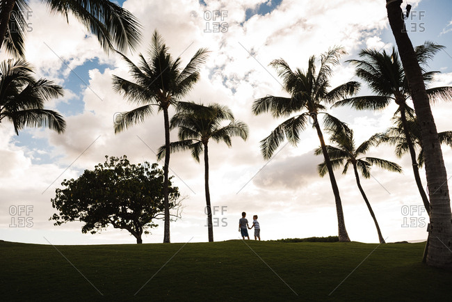 Brothers holding hands under palm trees