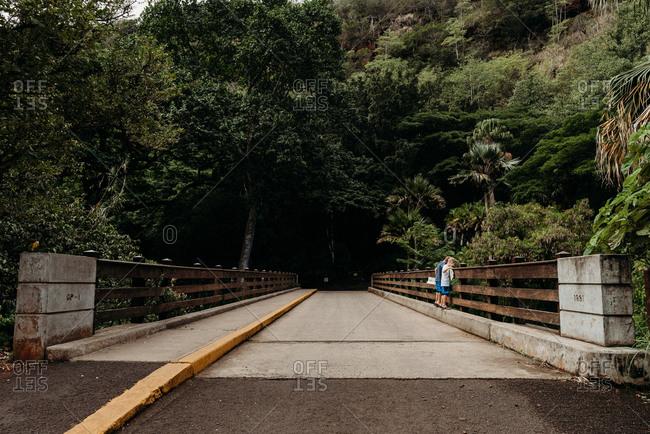 Boys looking over bridge in Waimea Valley, Pupukea, Hawaii