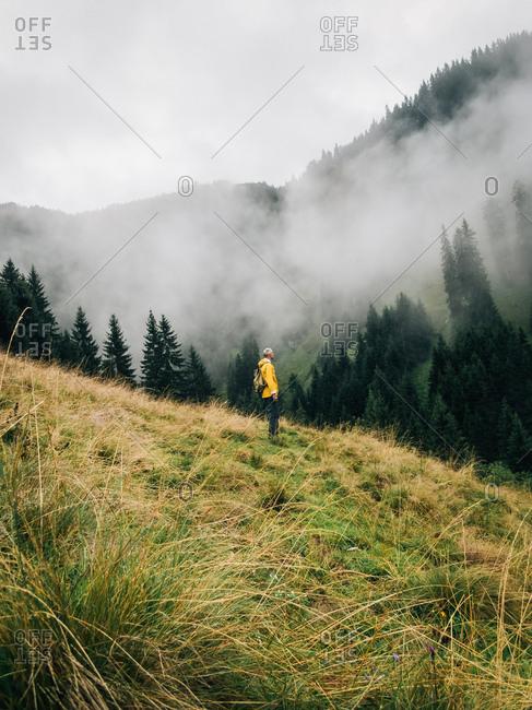 Man mushroom hunting in misty forest