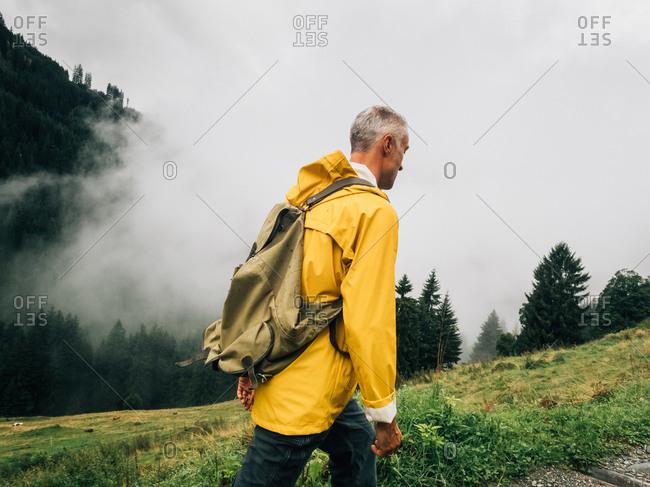 Man mushroom hunting in forested farmland