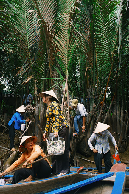 Middle-aged Vietnamese women wearing conical hats using traditional boats while hurrying to work in the morning. Thick jungles with high ferns on background.