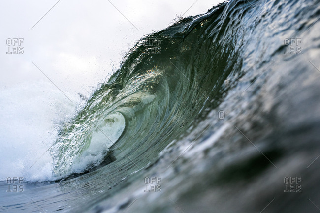 Curling swell in the ocean