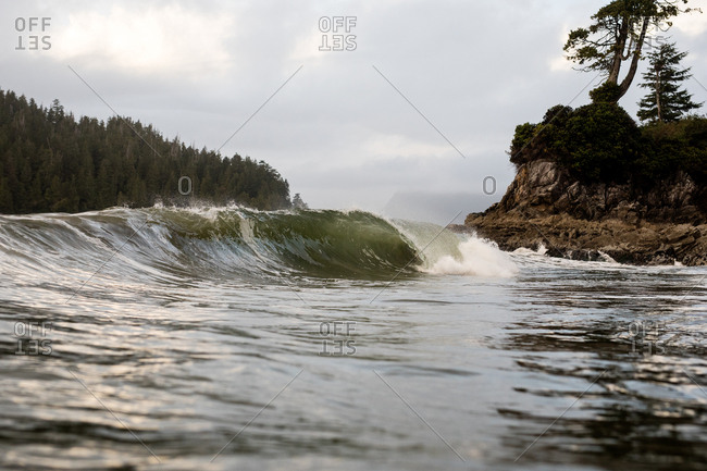 Curling swell near the seashore