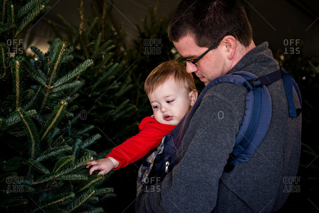 Dad and baby picking out Christmas trees