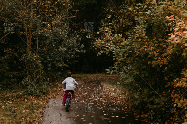 Little boy riding bike on path with fallen leaves