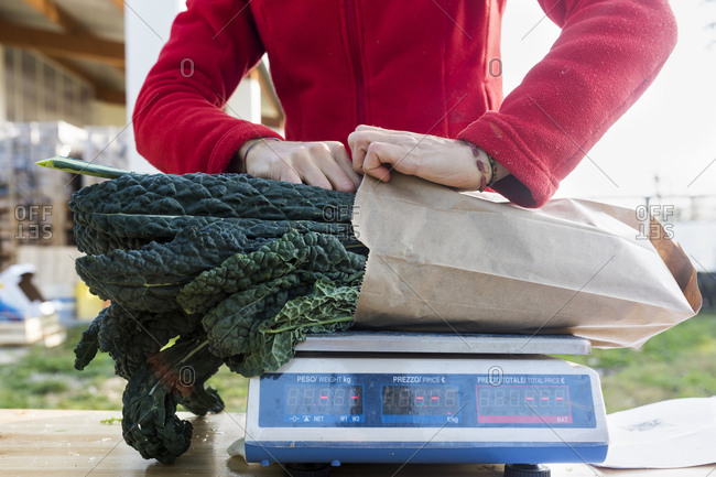 Person weighing bag of kale on scale
